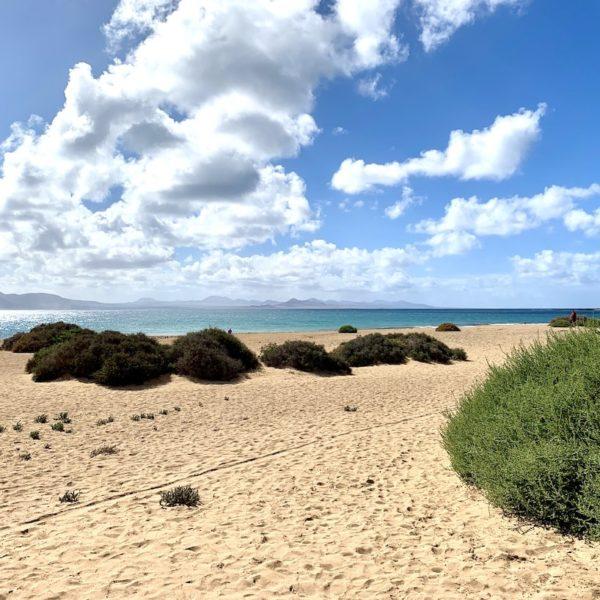 La Graciosa Playa del Salado