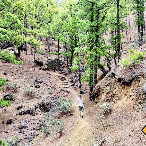 La Palma Caldera de Taburiente Wanderweg Mirador de la Cumbrecita