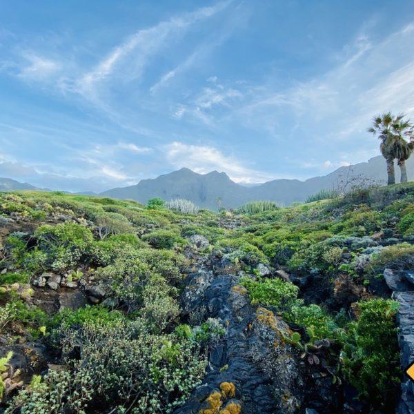 Landschaft Buenavista del Norte West-Teneriffa