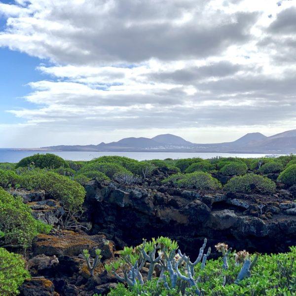 Landschaft Cueva de los Verdes Lanzarote