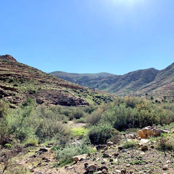 Landschaft Wanderung Barranco de las Peñitas