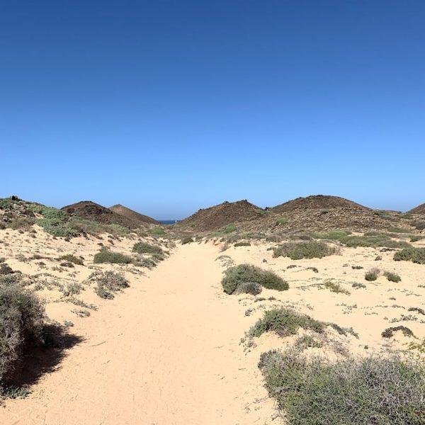 Lanzarote Ausflüge: Isla de Lobos