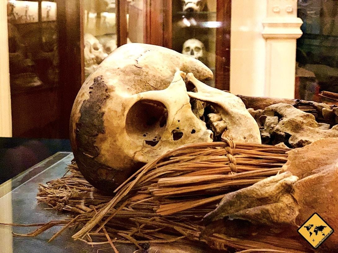 Las Palmas Museo Canario Totenkopf Mumie