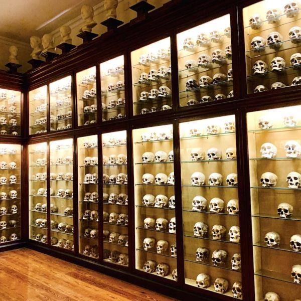 Las Palmas de Gran Canaria Totenköpfe kanarisches Museum