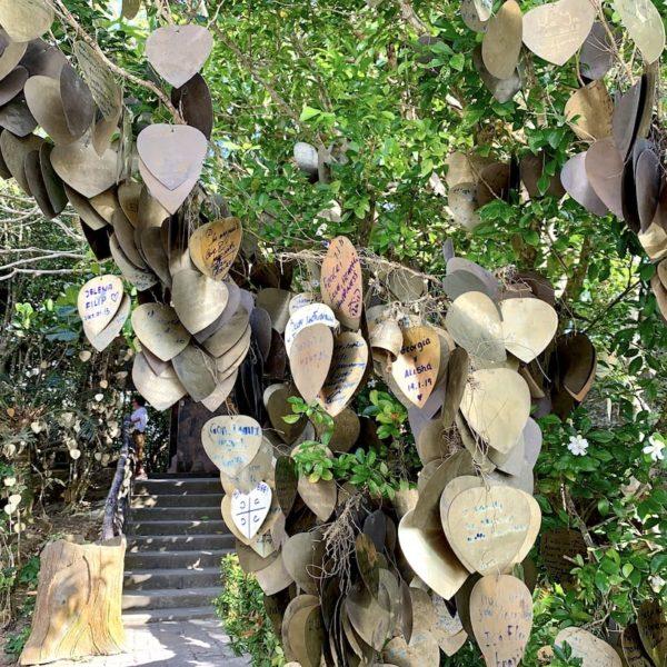 Liebesherzen Baum Big Buddha Phuket