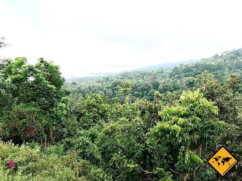 Lombok Urlaub Rinjani Fuss