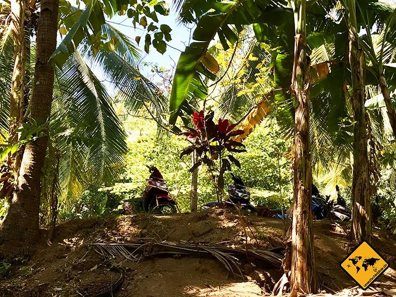 Lombok Urlaub Tipps Roller mieten