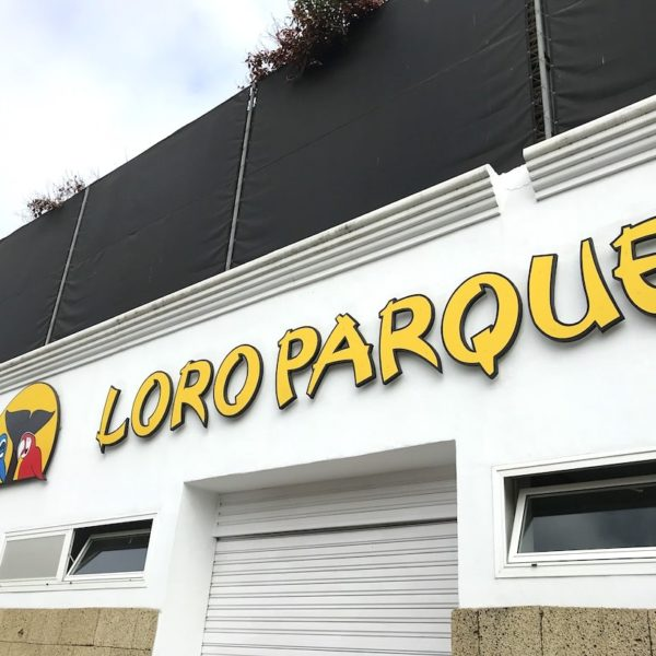 Loro Parque Puerto de la Cruz