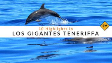 Los Gigantes Teneriffa – 10 Highlights, die du erleben solltest