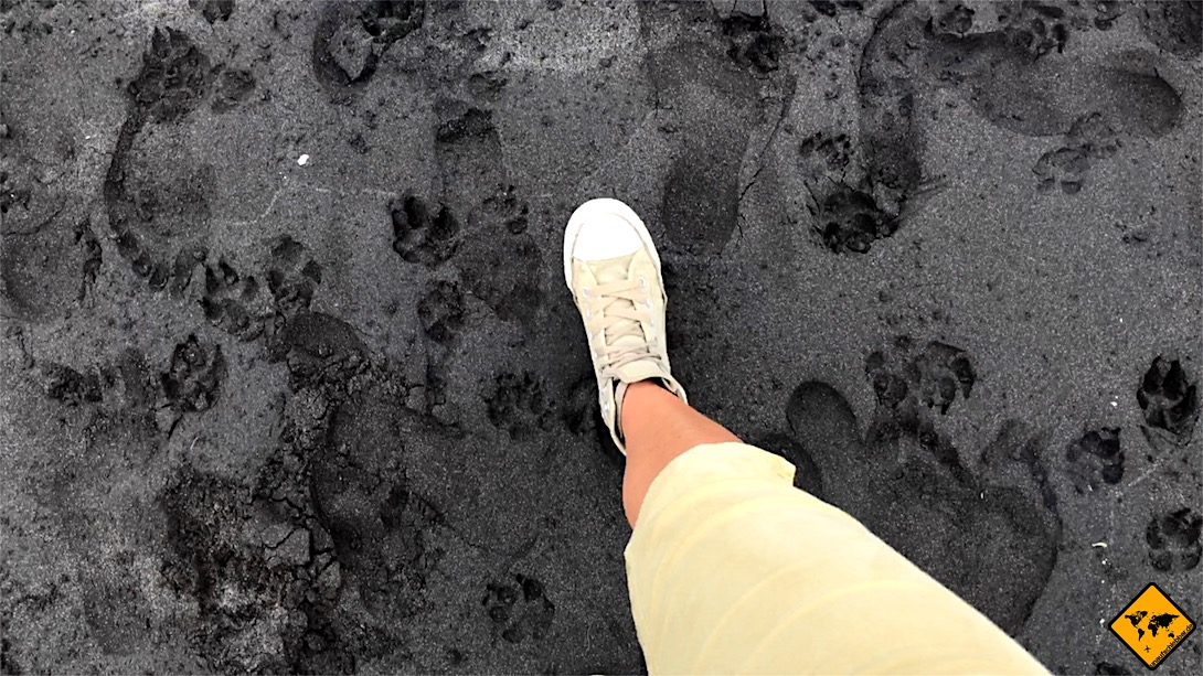 Der kleine Strand von Los Gigantes bietet schwarzen Sand