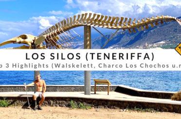 Los Silos (Teneriffa) – Großes Walskelett an der Charco Los Chochos