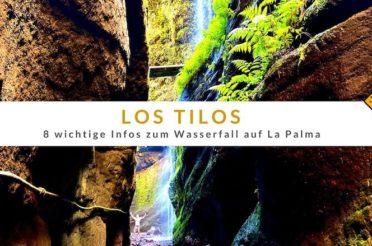 Los Tilos – 8 wichtige Infos zum Wasserfall auf La Palma