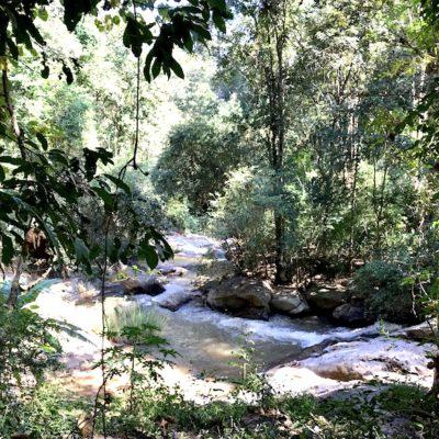 Mae Sa Waterfalls Natur