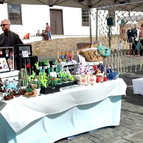Markt Teguise Lanzarote Stoff Kakteen