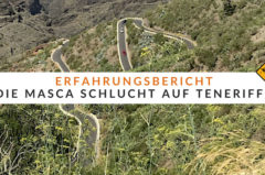 Masca Schlucht Teneriffa – Erfahrungsbericht – Nichts für schwache Nerven