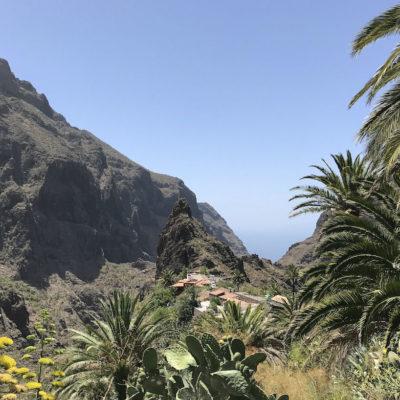 Bei einem Spaziergang durch die Masca Schlucht Teneriffa bieten sich immer wieder schöne Aussichten