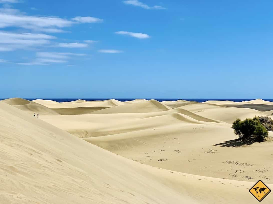 Maspalomas Dünen Gran Canaria