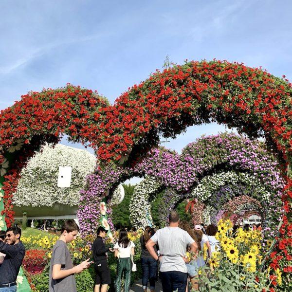 Vor allem am späteren Nachmittag ist das Besucheraufkommen im Miracle Garden besonders hoch