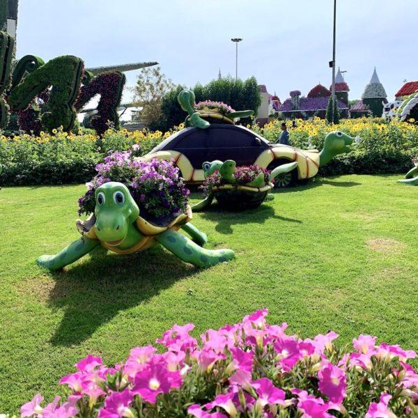 Miracle Garden Dubai Blumen Schildkröten