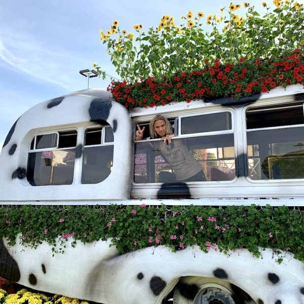 Miracle Garden in Dubai Blumen Bus