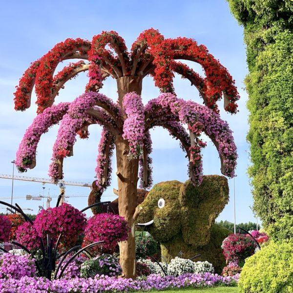 Miracle Garden in Dubai Blumen Palme