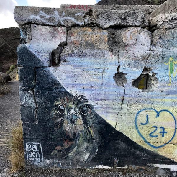 "Am ""Mirador Las Teresitas"" erwarten dich mit Graffitis besprühte Ruinen"