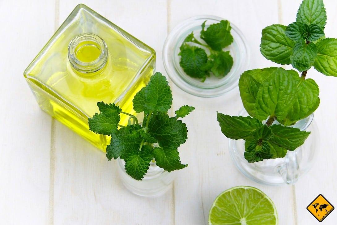 Auch ätherisches Öl ist ein gutes und natürliches Mittel zum Mückenschutz