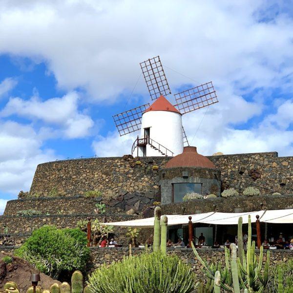 Mühle Lanzarote Kaktusgarten