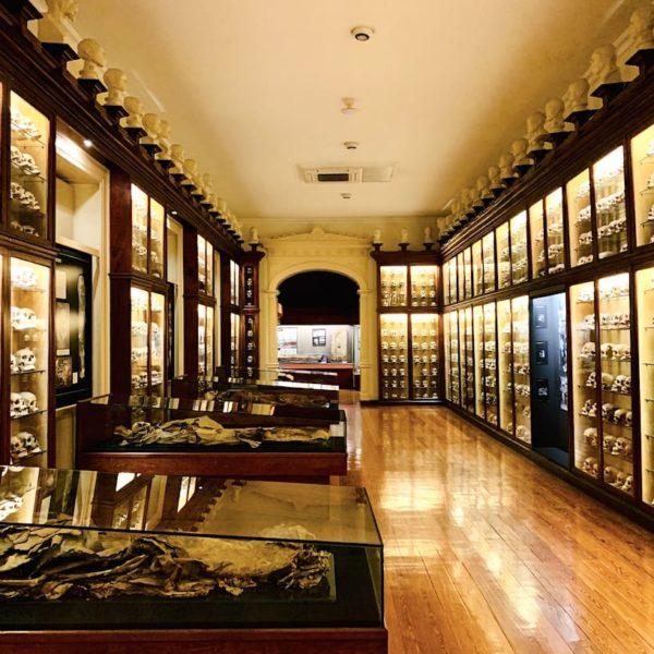 Mumien Gallerie Museo Canario Las Palmas de Gran Canaria