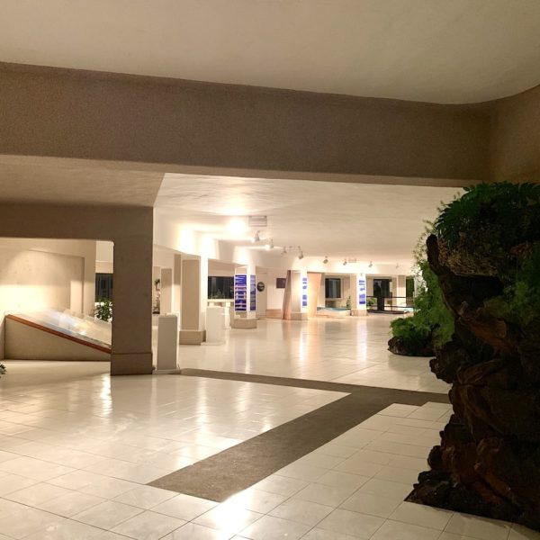 Museum Innenbereich Jameos del Agua Lanzarote