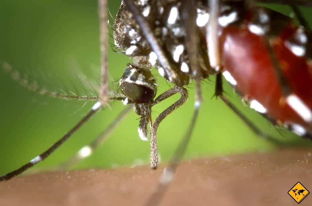 Myanmar Mückenschutz