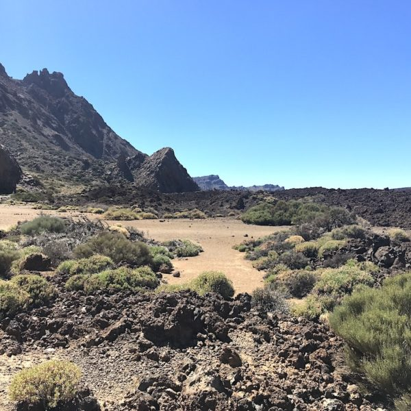 Nationalpark Teide Zapato de La Reina