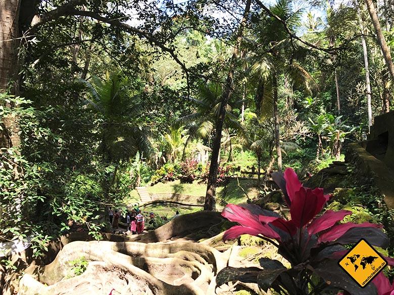Natur Goa Gajah