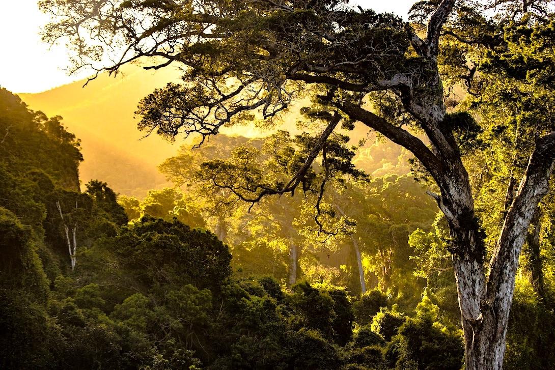 Nature Valley Südafrika