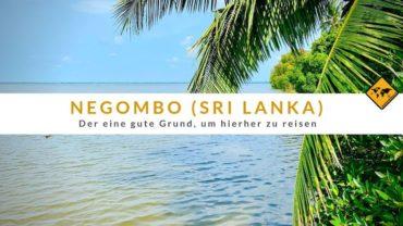 Negombo in Sri Lanka – Der 1 gute Grund, um hierher zu reisen