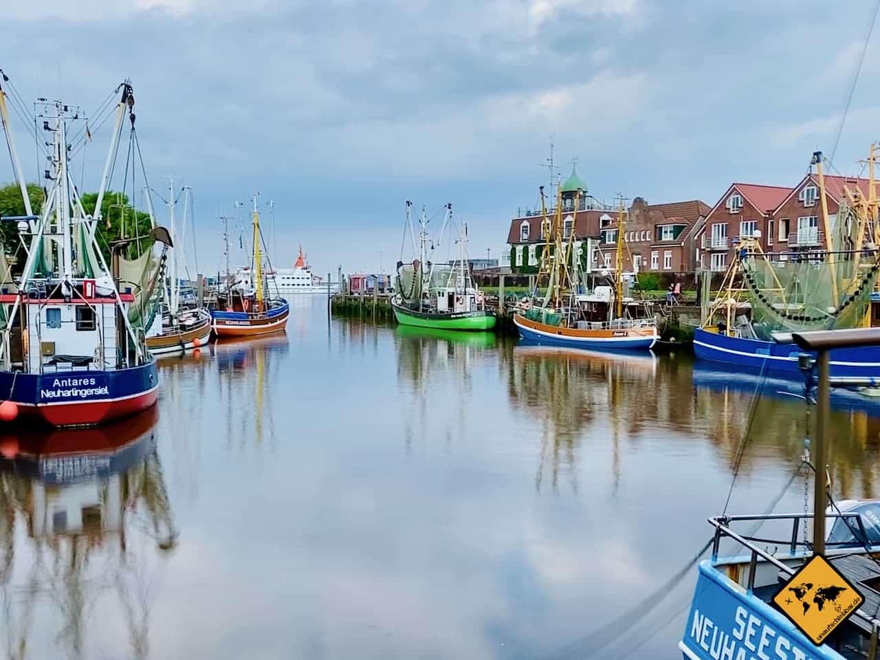 Neuharlingersiel Sehenswürdigkeiten Hafen Fischkutter