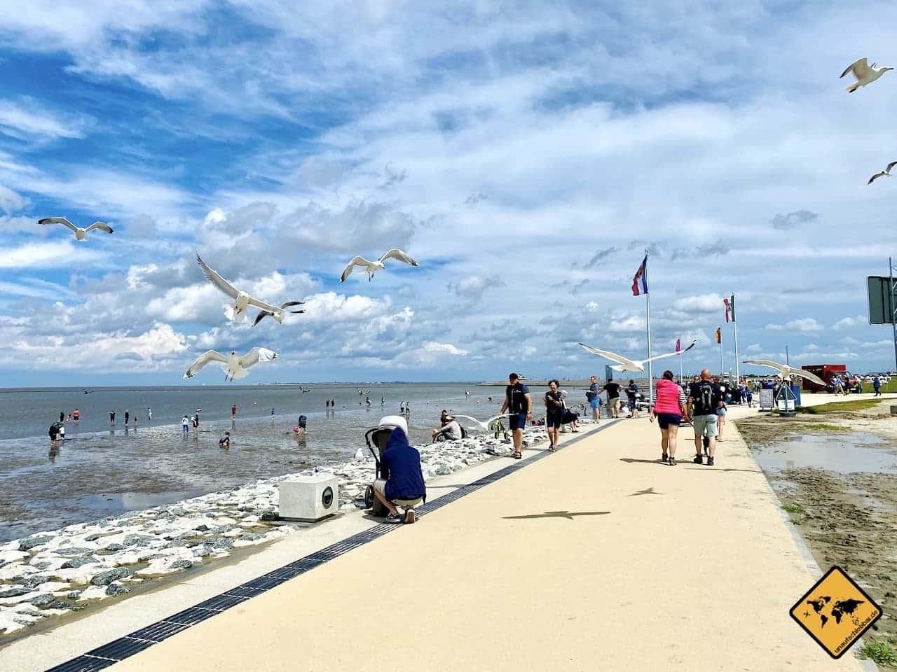 Norddeich Strandpromenade Möwen