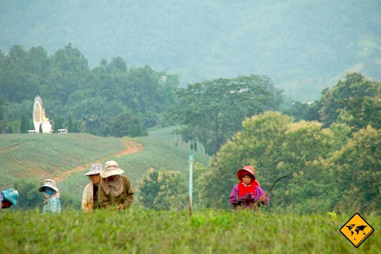 Nordthailand Rundreise Eindrücke
