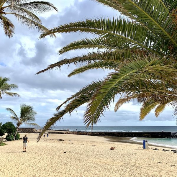 Palme Strand Costa Teguise