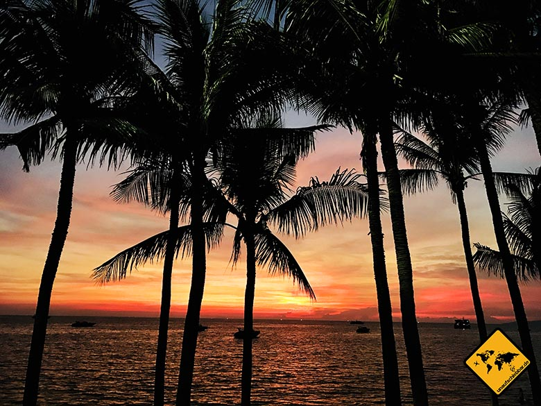 Palmen Pattaya Beach