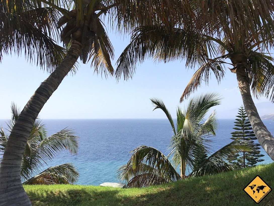 Palmengarten Santa Cruz Meer
