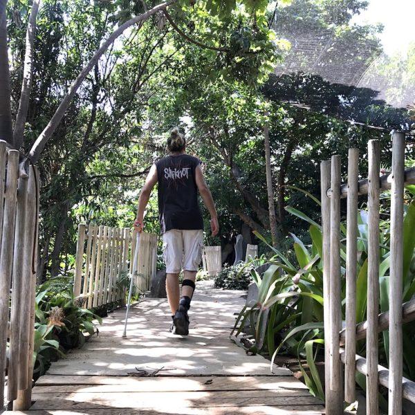 Palmetum Santa Cruz Weg Octogono