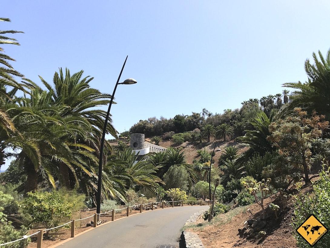 Palmetum Santa Cruz Weg Rollstuhl