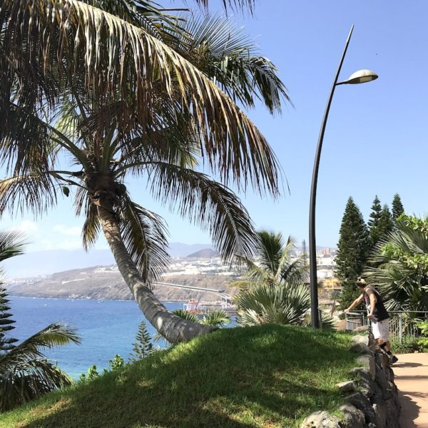 Palmetum Santa Cruz de Tenerife Ausblick Meer
