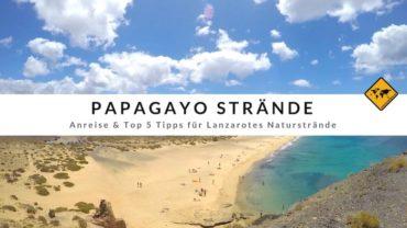 Papagayo Strände – Anreise & Top 5 Tipps für Lanzarotes Naturstrände