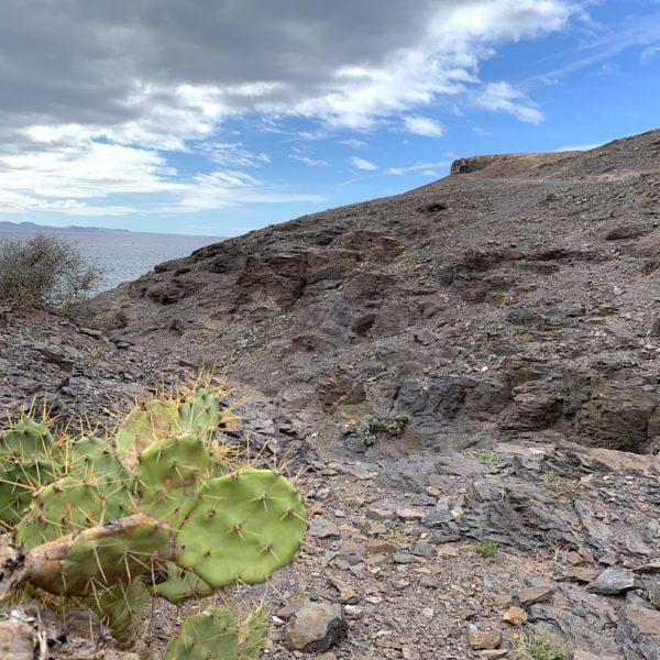 Papagayo Strände Lanzarote wandern
