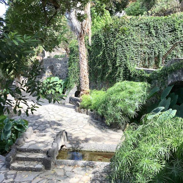 Parque Los Lavaderos El Sauzal Teneriffa grün