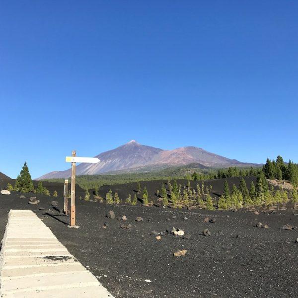 Parque Nacional del Teide Chinyero Wanderpfad
