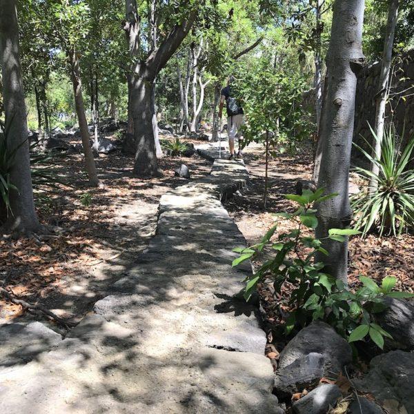 Parque del Drago Weg