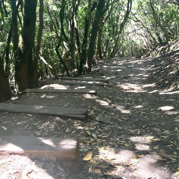 Path of the Senses Anaga Gebirge Wanderweg Teneriffa